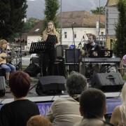 (Z)mešani festival - prva slovenska zero waste prireditev_foto Navid Fadaee