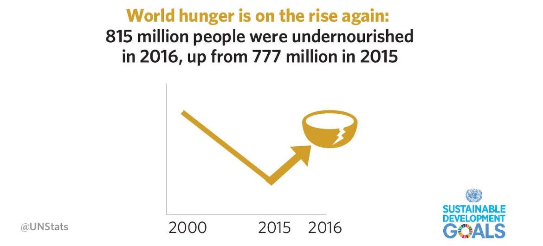 Sustainable Development Goals Report 2018: World Hunger infographic.