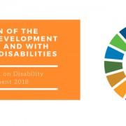 ZN-invalidnost-razvoj