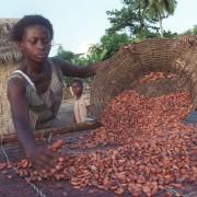 cocoa_fair