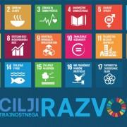 vsi-cilji-SDG-z-napisom-2-razlicica-1030x700